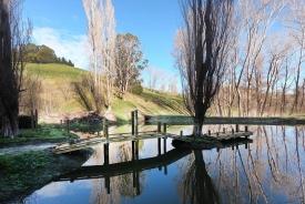 land maintenance - dam